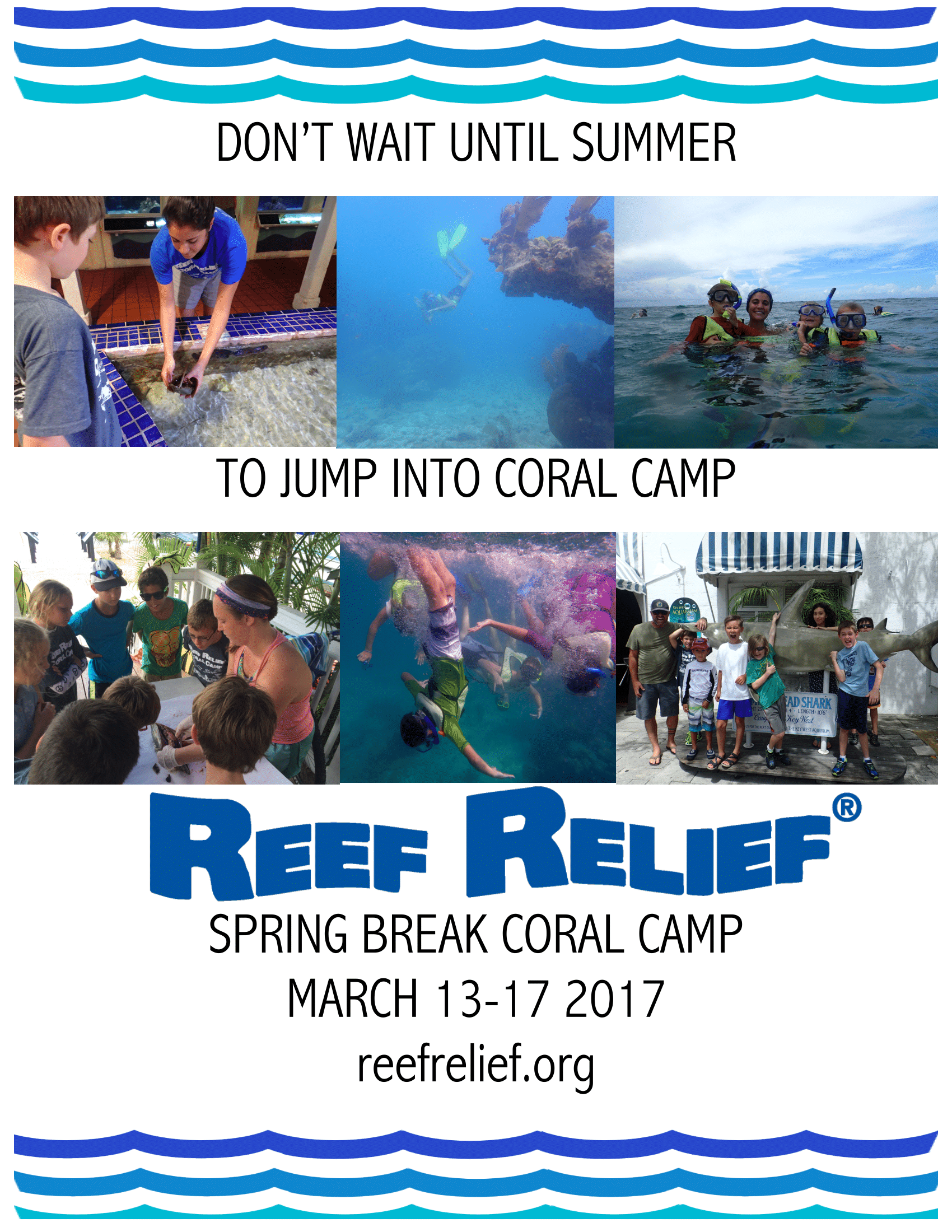 Spring Break Coral Camp